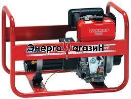 Endress ESE 604 DYS Diesel